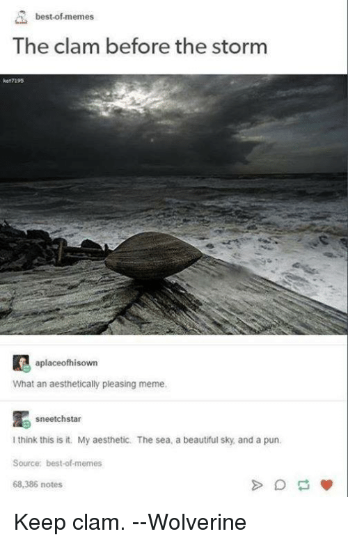 Best Of Memes: best-of memes  The clam before the storm  7195  aplaceofhisown  What an aesthetically pleasing meme.  sneetchstar  think this is it. My aesthetic. The sea. a beautiful sky and a pun.  Source: best-ofmemes  68,386 notes Keep clam.  --Wolverine