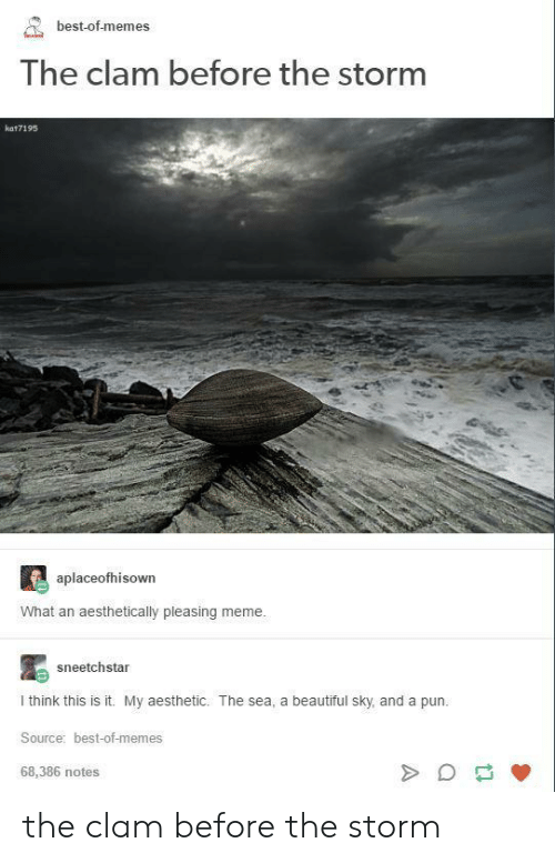 Best Of Memes: best-of-memes  The clam before the Storm  kat7195  aplaceofhisown  What an aesthetically pleasing meme.  sneetchstar  I think this is it. My aesthetic. The sea, a beautiful sky, and a pun.  Source: best-of-memes  68,386 notes the clam before the storm