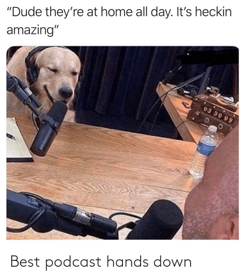hands: Best podcast hands down
