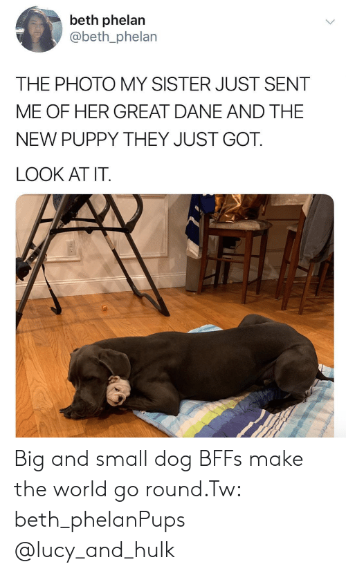 Instagram, Target, and Hulk: beth phelan  @beth_phelan  THE PHOTO MY SISTER JUST SENT  ME OF HER GREAT DANE AND THE  NEW PUPPY THEY JUST GOT.  LOOK AT IT Big and small dog BFFs make the world go round.Tw: beth_phelanPups @lucy_and_hulk