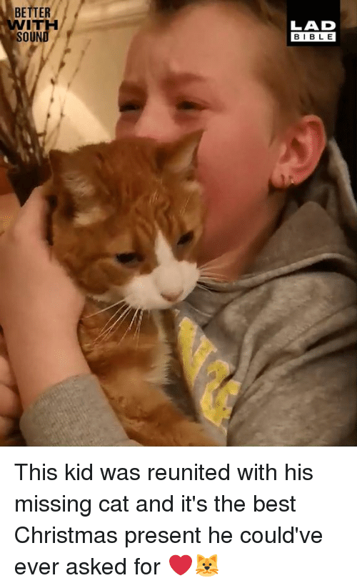Christmas, Dank, and Best: BETTER  WITH  SOUND  LAD  BIBLE This kid was reunited with his missing cat and it's the best Christmas present he could've ever asked for ❤️🐱
