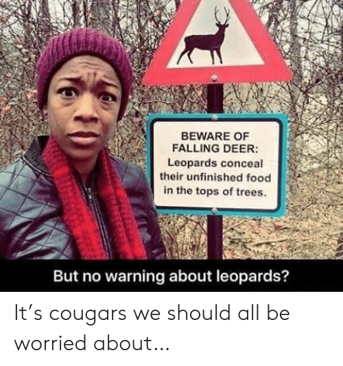 Deer, Food, and Trees: BEWARE OF  FALLING DEER:  Leopards conceal  their unfinished food  in the tops of trees.  But no warning about leopards? It's cougars we should all be worried about…