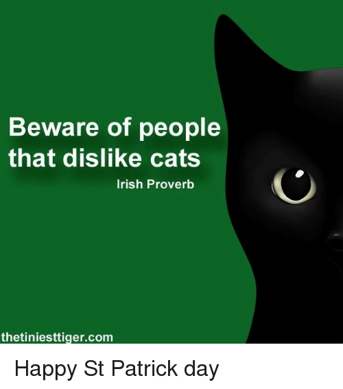 Image Result For Happy St Patrick S Day