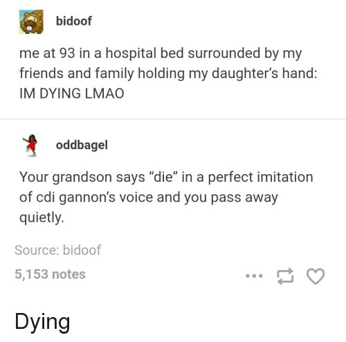 """Bidoofed: bidoof  me at 93 in a hospital bed surrounded by my  friends and family holding my daughter's hand:  IM DYING LMAO  oddbagel  Your grandson says """"die"""" in a perfect imitation  of cdi gannon's voice and you pass away  quietly  Source: bidoof  5,153 notes Dying"""