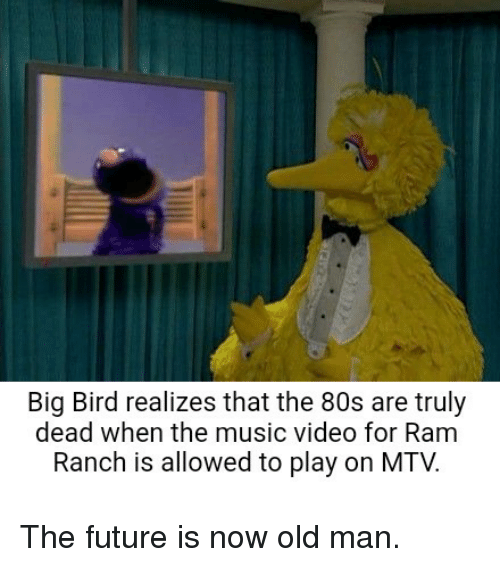 Big Bird Realizes That The 80s Are Truly Dead When The Music