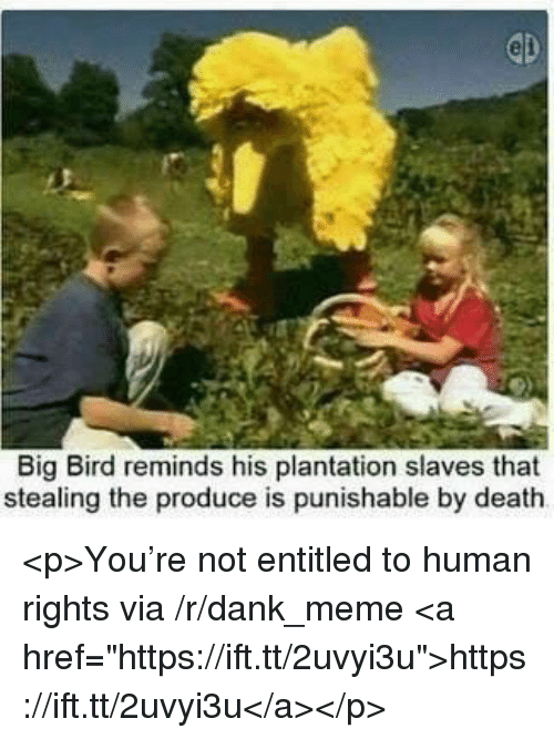 "Dank, Meme, and Death: Big Bird reminds his plantation slaves that  stealing the produce is punishable by death <p>You're not entitled to human rights via /r/dank_meme <a href=""https://ift.tt/2uvyi3u"">https://ift.tt/2uvyi3u</a></p>"