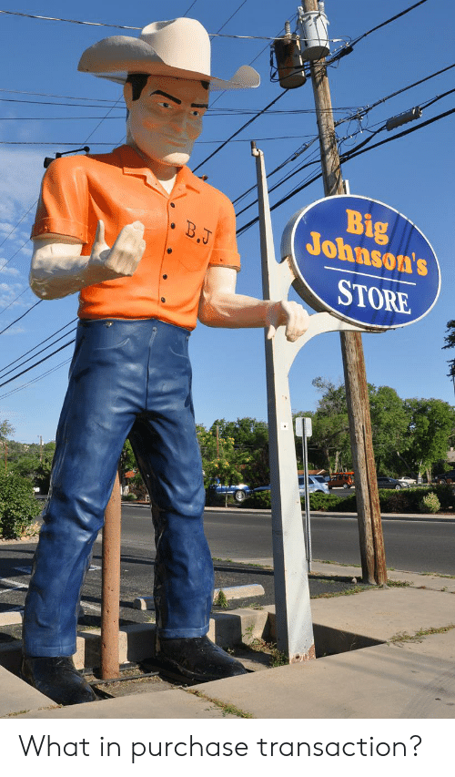 Big, What, and Store: Big  Johnson's  B.J  STORE What in purchase transaction?