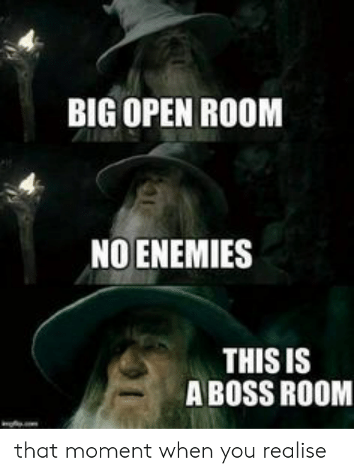Enemies, Boss, and Big: BIG OPEN ROOM  NO ENEMIES  THIS IS  A BOSS ROOM that moment when you realise