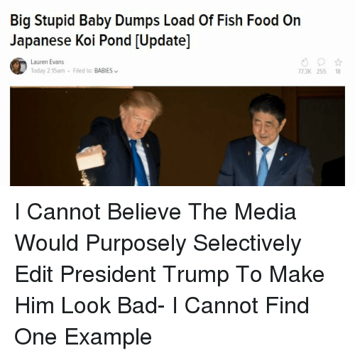 Bad, Food, and Fish: Big Stupid Baby Dumps Load Of Fish Food On  Japanese Koi Pond [Update]  Lauren Evans  oday 2:15am-Filed to: BABIES  773K 255 18
