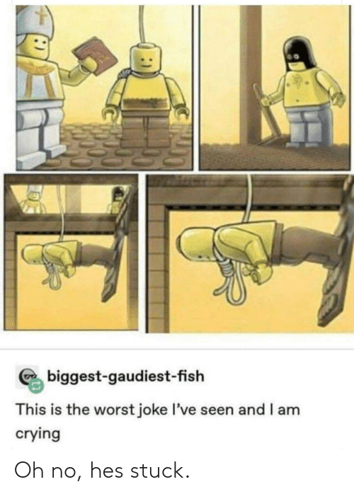 This Is The Worst: biggest-gaudiest-fish  This is the worst joke I've seen and I am  crying Oh no, hes stuck.