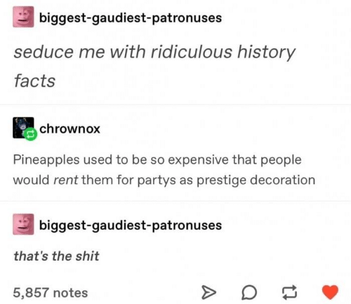 pineapples: biggest-gaudiest-patronuses  seduce me with ridiculous history  facts  chrownox  Pineapples used to be so expensive that people  would rent them for partys as prestige decoration  biggest-gaudiest-patronuses  that's the shit  5,857 notes