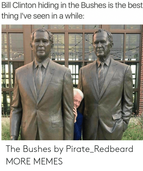 Ives: Bill Clinton hiding in the Bushes is the best  thing I've seen in a while The Bushes by Pirate_Redbeard MORE MEMES
