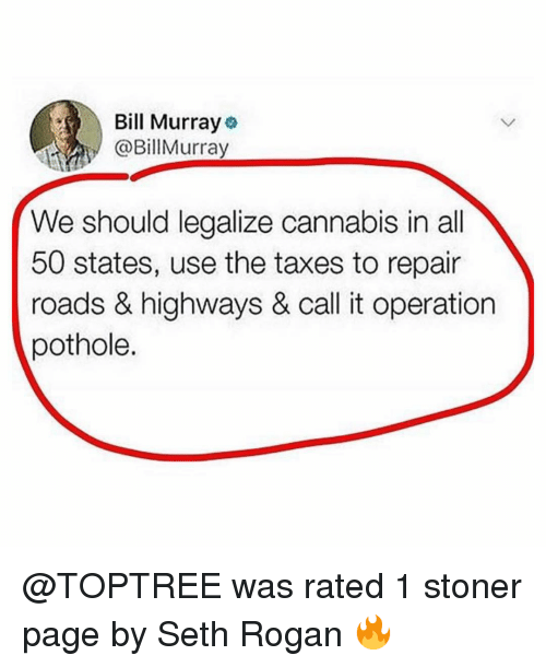 Memes, Taxes, and Bill Murray: Bill Murray  @BillMurray  We should legalize cannabis in all  50 states, use the taxes to repair  roads & highways & call it operation  pothole. @TOPTREE was rated 1 stoner page by Seth Rogan 🔥