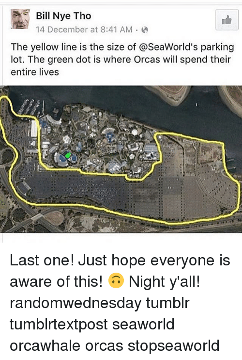 SeaWorld: Bill Nye Tho  14 December at 8:41 AM  The yellow line is the size of aseaWorld's parking  lot. The green dot is where Orcas will spend their  entire lives Last one! Just hope everyone is aware of this! 🙃 Night y'all! randomwednesday tumblr tumblrtextpost seaworld orcawhale orcas stopseaworld