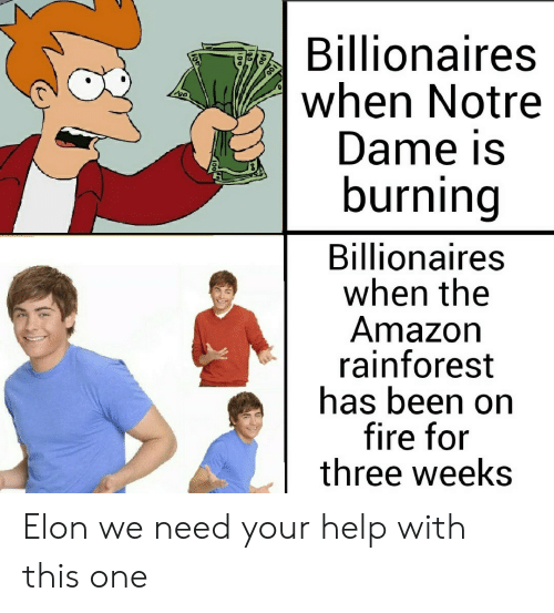 for-three: Billionaires  when Notre  Dame is  burning  Billionaires  when the  Amazon  rainforest  has been on  fire for  three weeks Elon we need your help with this one