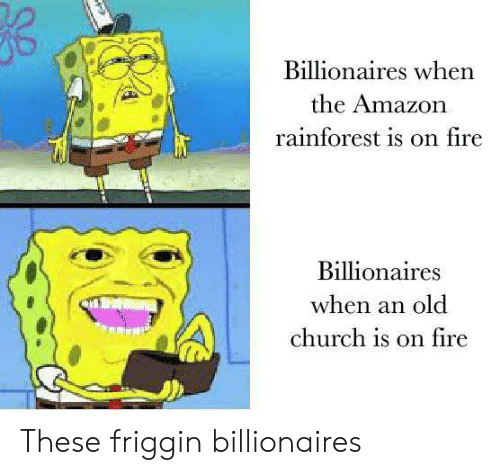 Amazon, Church, and Fire: Billionaires when  the Amazon  rainforest is on fire  Billionaires  when an old  church is on fire These friggin billionaires
