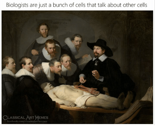 Facebook, Memes, and facebook.com: Biologists are just a bunch of cells that talk about other cells  CLASSICAL ART MEMES  facebook.com/elassicalartimemes