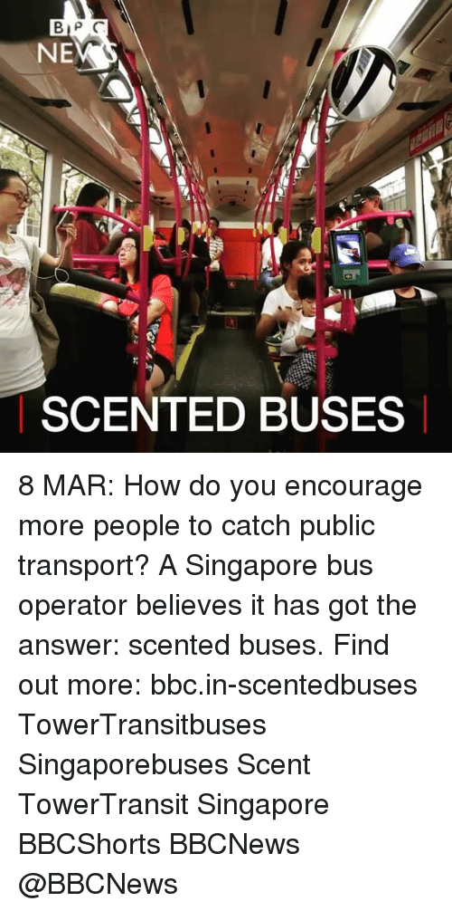 8 Mars: BIP C  NE  SCENTED BUSES 8 MAR: How do you encourage more people to catch public transport? A Singapore bus operator believes it has got the answer: scented buses. Find out more: bbc.in-scentedbuses TowerTransitbuses Singaporebuses Scent TowerTransit Singapore BBCShorts BBCNews @BBCNews