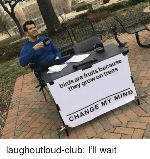 Club, Tumblr, and Birds: birds are fruits because  they grow on trees  CHANGE MY MIND laughoutloud-club:  I'll wait