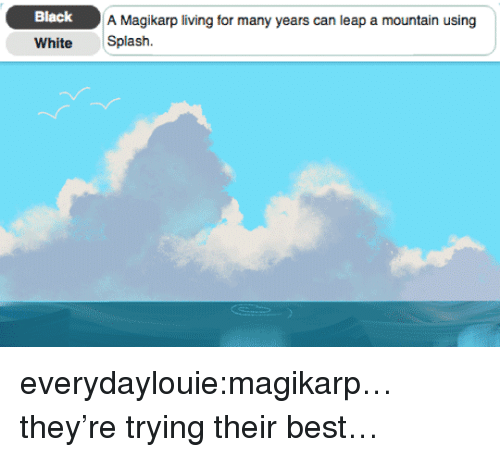 magikarp: Black  A Magikarp living for many years can leap a mountain using  White Splash. everydaylouie:magikarp…they're trying their best…