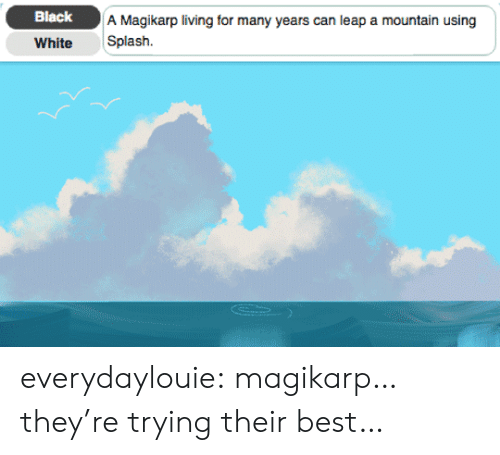 magikarp: Black  A Magikarp living for many years can leap a mountain using  White Splash. everydaylouie:  magikarp…they're trying their best…