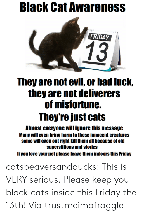 Bad, Cats, and Friday: Black Cat Awareness  FRIDAY  13  They are not evil, or bad luck,  they are not deliverers  of misfortune.  They're just cats  Almost everyone will ignore this message  Many will even bring harm to these innocent creatures  some will even out right kill them all because of old  superstitions and stories  If you love your pet please leave them indoors this Friday catsbeaversandducks: This is VERY serious. Please keep you black cats inside this Friday the 13th! Via trustmeimafraggle