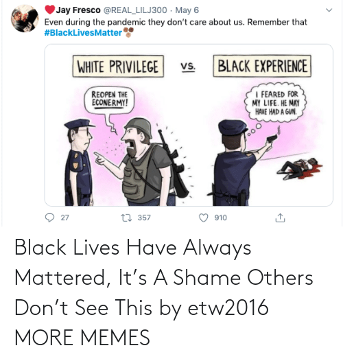 shame: Black Lives Have Always Mattered, It's A Shame Others Don't See This by etw2016 MORE MEMES
