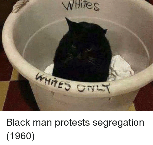 Protests: Black man protests segregation (1960)