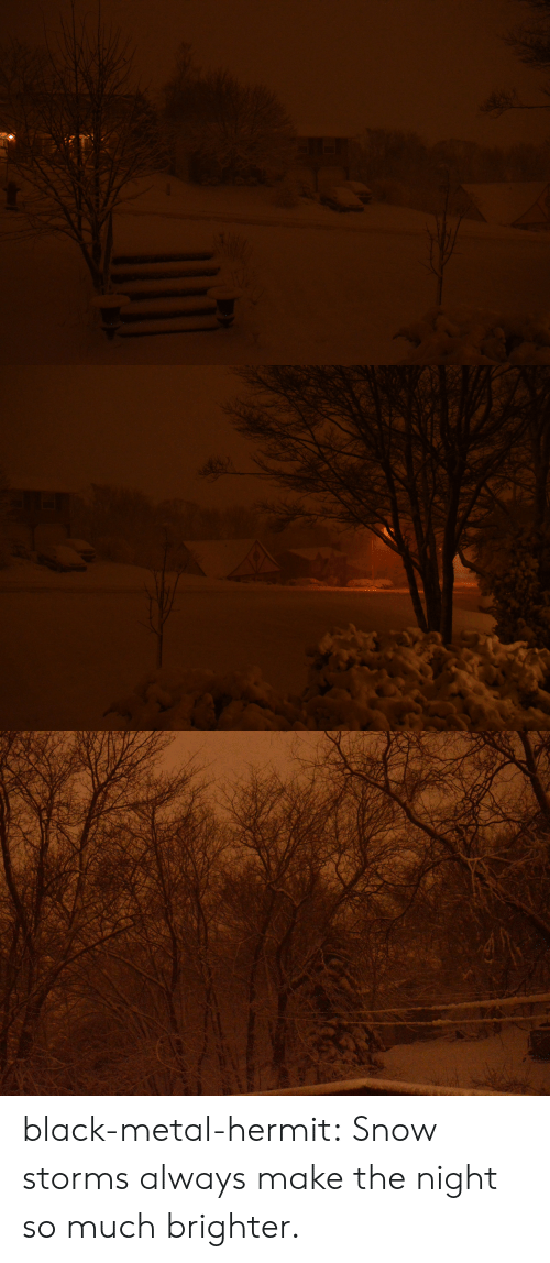 Tumblr, Black, and Blog: black-metal-hermit: Snow storms always make the night so much brighter.