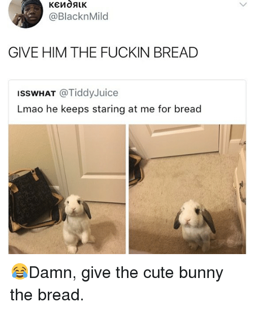 Fuckins: @BlacknMild  GIVE HIM THE FUCKIN BREAD  ISSWHAT @TiddyJuice  Lmao he keeps staring at me for bread 😂Damn, give the cute bunny the bread.