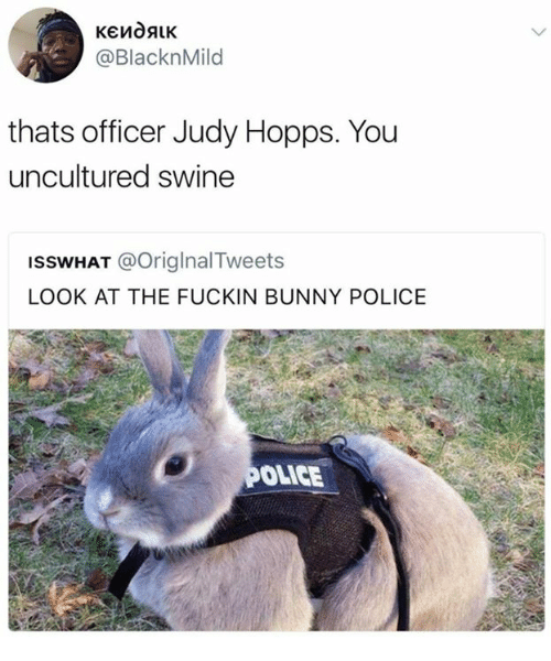 Officer Judy: @BlacknMild  thats officer Judy Hopps. You  uncultured swine  ISSWHAT @OriglnalTweets  LOOK AT THE FUCKIN BUNNY POLICE  OLICE