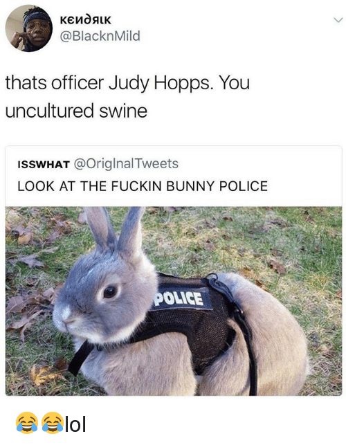 Officer Judy: @BlacknMild  thats officer Judy Hopps. You  uncultured swine  ISSWHAT @OriglnalTweets  LOOK AT THE FUCKIN BUNNY POLICE  OLICE 😂😂lol