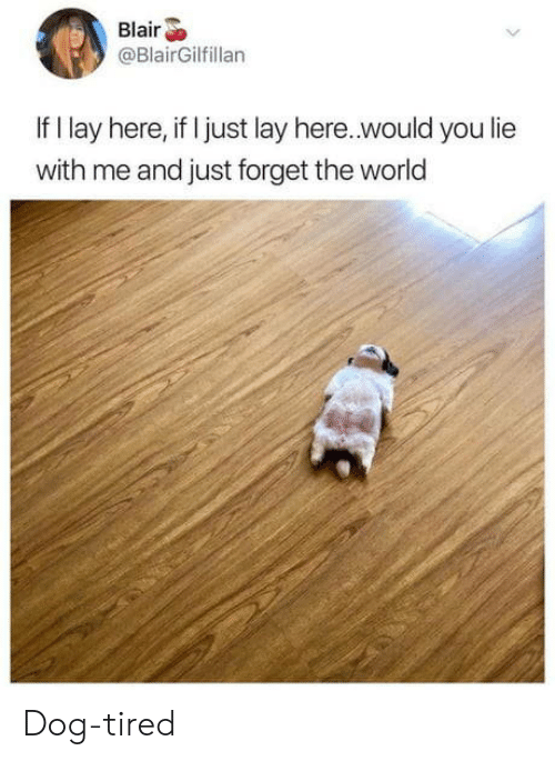 World, Dog, and The World: Blair  @BlairGilfillan  If I lay here, if I just lay here..would you lie  with me and just forget the world Dog-tired
