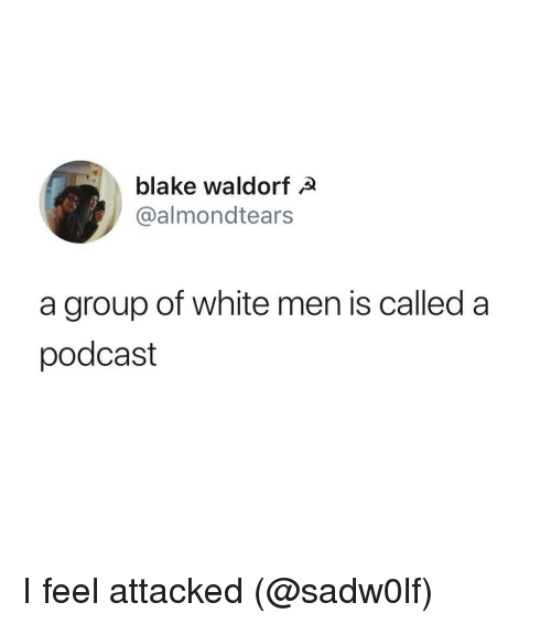 Funny, White, and Podcast: blake waldorfa  @almondtears  a group of white men is called a  podcast I feel attacked (@sadw0lf)
