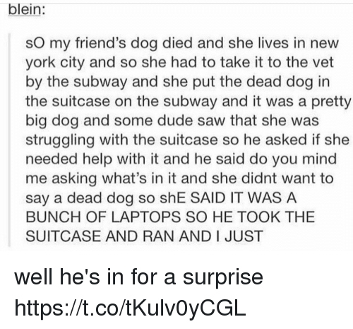 big dog: blein:  sO my friend's dog died and she lives in new  york city and so she had to take it to the vet  by the subway and she put the dead dog in  the suitcase on the subway and it was a pretty  big dog and some dude saw that she was  struggling with the suitcase so he asked if she  needed help with it and he said do you mind  me asking what's in it and she didnt want to  say a dead dog so shE SAID IT WAS A  BUNCH OF LAPTOPS SO HE TOOK THE  SUITCASE AND RAN AND I JUST well he's in for a surprise https://t.co/tKulv0yCGL