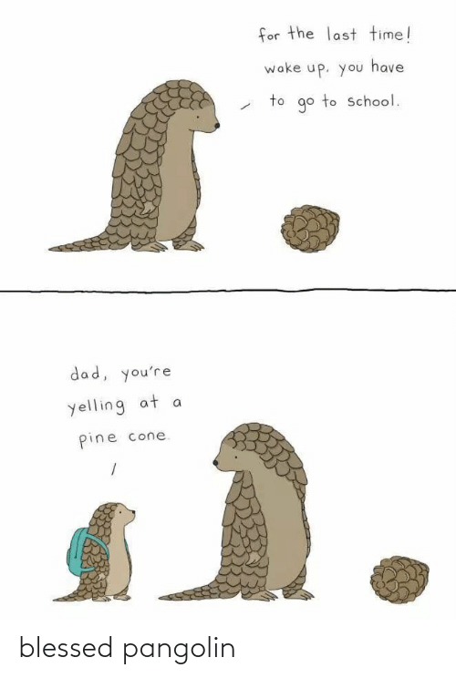 blessed: blessed pangolin