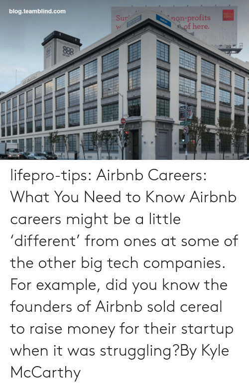 Airbnb: blog.teamblind.com  non-profits  of here.  Sur  VA) lifepro-tips:   Airbnb Careers: What You Need to Know  Airbnb careers might be a little 'different' from ones at some of the other big tech companies. For example, did you know the founders of Airbnb sold cereal to raise money for their startup when it was struggling?By Kyle McCarthy