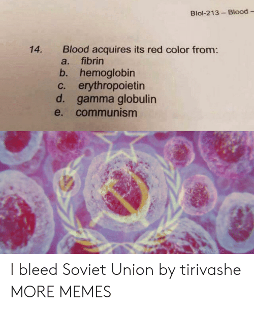 gamma: Blol-213-Blood  Blood acquires its red color from:  fibrin  14.  a.  b. hemoglobin  c. erythropoietin  d. gamma globulin  e. communism  Utirivashe I bleed Soviet Union by tirivashe MORE MEMES