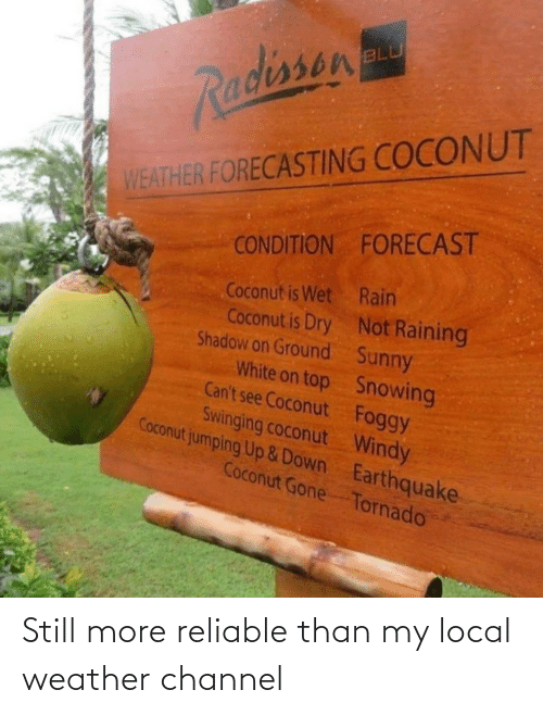On Top: BLU  Radissen  WEATHER FORECASTING COCONUT  CONDITION FORECAST  Coconut is Wet Rain  Coconut is Dry Not Raining  Shadow on Ground Sunny  White on top Snowing  Can't see Coconut Foggy  Swinging coconut Windy  Coconut jumping Up &Down Earthquake  Coconut Gone Tornado Still more reliable than my local weather channel