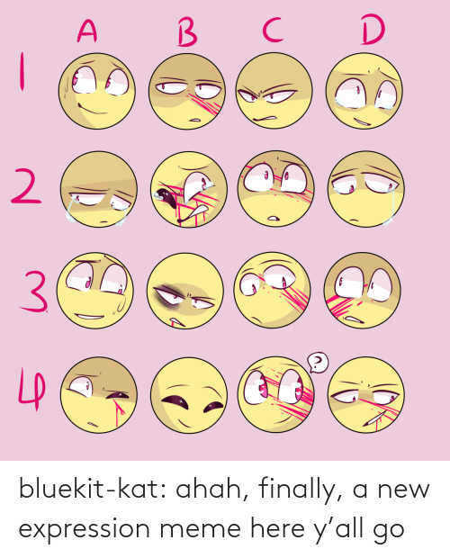 finally: bluekit-kat:  ahah, finally, a new expression meme here y'all go