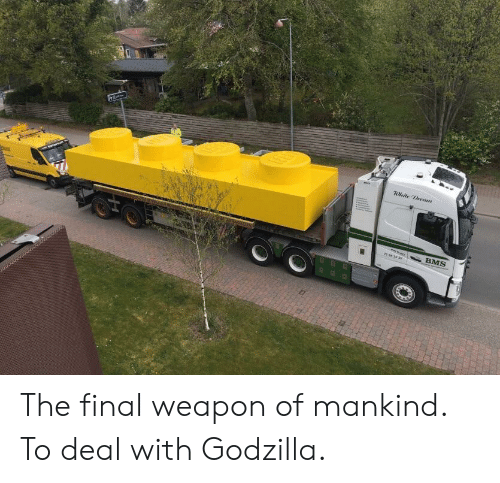Godzilla, Bms, and Weapon: BMS The final weapon of mankind. To deal with Godzilla.