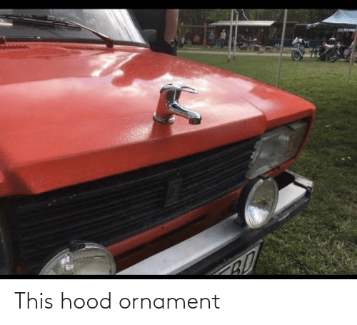 Hood: BO This hood ornament