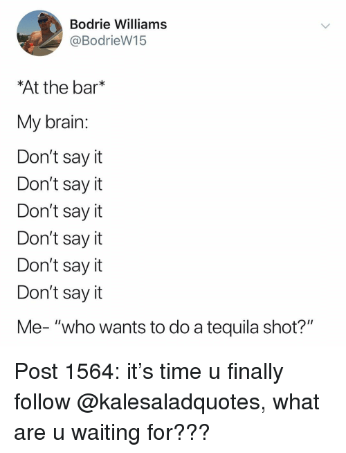 "Memes, Say It, and Brain: Bodrie Williams  @BodrieW15  At the bar*  My brain  Don't sayit  Don't say it  Don't say it  Don't say it  Don't say it  Don't say it  Me- ""who wants to do a tequila shot?"" Post 1564: it's time u finally follow @kalesaladquotes, what are u waiting for???"