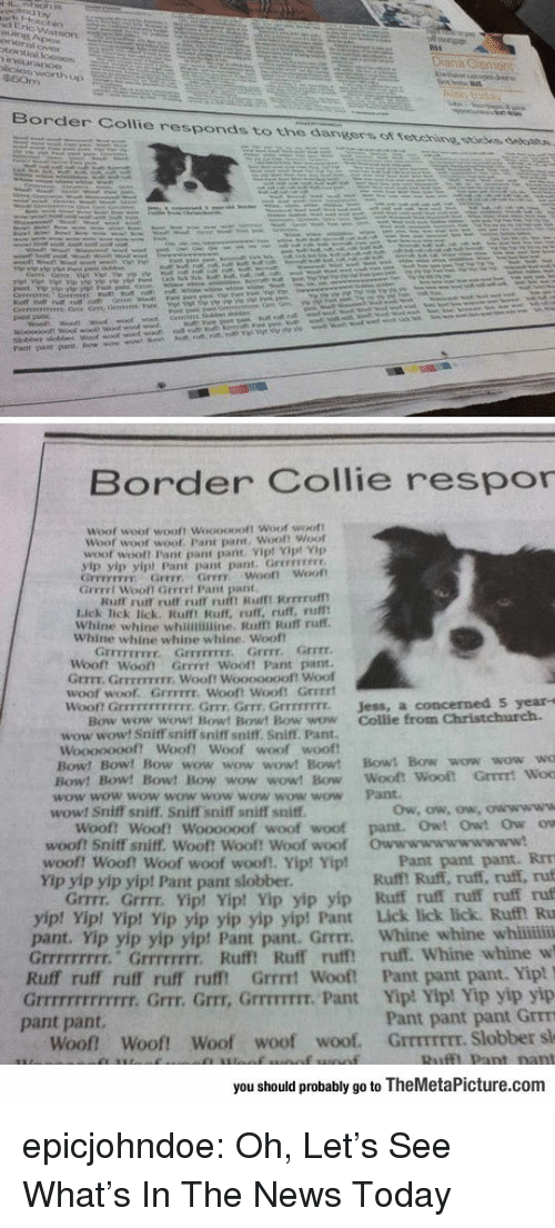 collie: Border Collie responds to the dangers ot tetehine ssoees, debatn.  Border Collie respor  Woof  woot wooft Woooopoft Woof woott  Woof woot  woof. Pant pant. Woof! Woof  woof wooft Pant pant pant Vip! Yipt Vp  yip yip yipt Pant pant pant. Grrevrss  GFFEFETFY Grrr Grrr woof! Woot  Grrrrt Wooll Gerrrt Pant pant  Kuff rurt ruff ruff ru Rufmt Rrrrruf  Lick lick lick. Rulft Ruff, ruff, ruff, rufl  Whine whine whinimine. Rafft Ruff ruff.  Whine whine whine whine. Woof  Grrrr.  『rrrrrrrr.  Grrrrrrrr,  Grrrr  Woont Woot Grrrrt Wooft Pant pant  Grrrt. GrrEFFIEIr. Wooft Wooooooof! Woof  woof woof. GrrFITE. Wooft Wooft Grrrrt  won Grrrrrrrrrrrr. Grrr, Grrr Grrrrrrrr.  Jess, a concerned S year-s  Bow wow wowt Bowt Bowt Bow wow Collie from Christchurch.  wow wowt Sniff sniff sniffT soiff. Sniff. Pant.  woof woof  Woooooooft Woof! Woof  Bow! Bow! Bow wow wow wow! Bow! Bows Bow wow wow wo  Bow! Bow! Bow! Bow wow wow! Bow Wooft  wow wow wow wow wow wow wow wow Pant  wow! Sniff sniff. Sniff sniff sniff sniff  Woof! Woof! Woooooof woof woof pant. Owt Owt Ow ow  woof? Sniff sniff. Woof! Woof! Woof woof  woof! woof! Woof woof woof!, Yip! Yip!  Yip yip yip yip! Pant pant slobber  Owwwwwwwwwww!  Pant pant pant. RrT  Ruff! Ruff, ruff, ruff, ruf  Grrrr. Grrrr. Yipt Yip! Yip yip yip Ruff ruff ruff ruff ruf  p! Vip! Yip yip yip yip yip! Pant Lick lick lick. Ruf Ru  pant. Yip yip yip yip! Pant pant. Grrrr. Whine whine whii  Grrrrrrrrr. Grrrrrrrr. Ruff! Ruff ruff ruff. Whine whine w  Ruff ruff ruff ruff rufft Grrrt Wooft Pant pant pant. Yip!  Grrrrrrrrrrrrr. Grrr. Grr, GrrrTIT. Pant Yip! Yip! Yip yip yip  Pant pant pant Grrm  Woof Woof! Woof woof woof. GrrmrEEr. Slobber sl  yip! Yi  pant pant.  you should probably go to TheMetaPicture.com epicjohndoe:  Oh, Let's See What's In The News Today