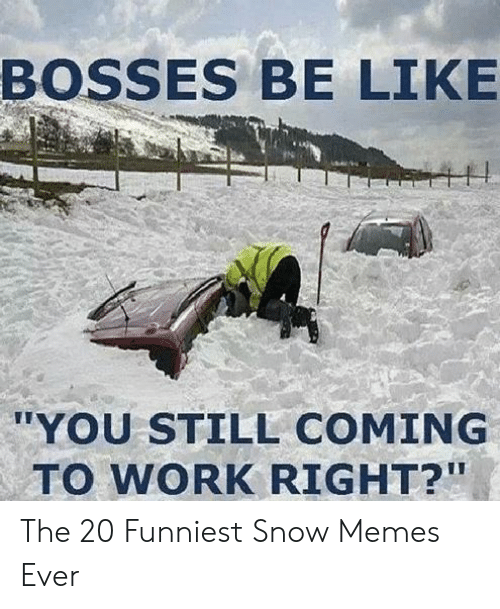 """Funny Snow Memes: BOSSES BE LIKE  """"YOU STILL COMING  TO WORK RIGHT?"""" The 20 Funniest Snow Memes Ever"""
