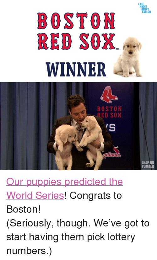 "Lottery, Puppies, and Target: BOSTON  RED SOX.J  WINNER  TM   BOSTON  RED SOX  LNJF ON  TUMBLR <p><a href=""http://www.youtube.com/watch?v=Wq1X4maWAXA"" target=""_blank"">Our puppies predicted the World Series</a>! <span>Congrats to Boston!</span><span> </span></p> <p><span></span></p> <p><span>(Seriously, though. We've got to start having them pick lottery numbers.)</span></p>"