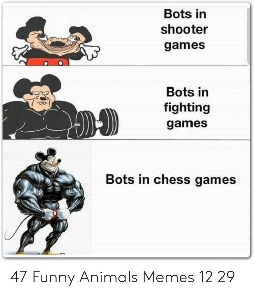 Animals Memes: Bots in  shooter  games  Bots in  fighting  games  Bots in chess games 47 Funny Animals Memes 12 29