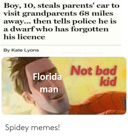 Bad, Florida Man, and Memes: Boy, 10, steals parents' car to  visit grandparents 68 miles  away... then tells police he is  a dwarf who has forgotten  his licence  By Kate Lyons  Not bad  kid  Florida  man Spidey memes!