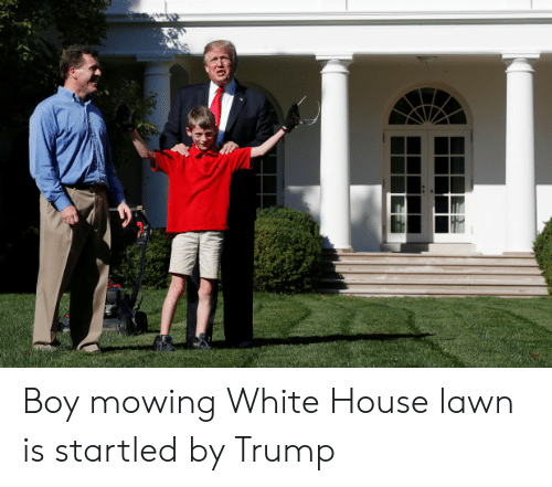 25 Best Memes About Mowing White House Lawn Mowing