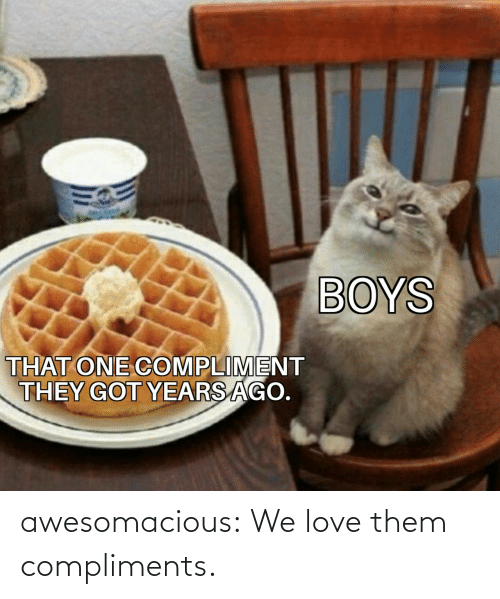 Love, Tumblr, and Blog: BOYS  THAT ONE COMPLIMENT  THEY GOT YEARS AGO. awesomacious:  We love them compliments.